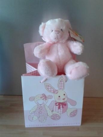 Baby Girl or Boy Bear In Bag