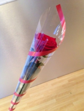 Single Wrapped Red Rose
