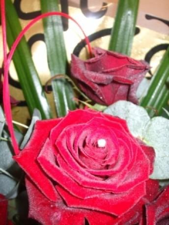 1/2 Dozen Luxury Roses
