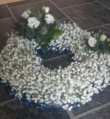 Gypsophila Open Wreath
