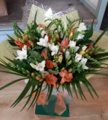 Mixed Freesia
